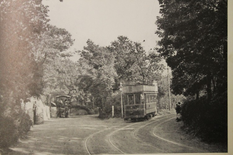 Passing the Wheatsheaf Inn - oaks and elms line the road.